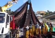 Treballant al Port