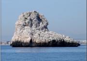 Medallot (Illes Medes)