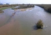 Río Tordera