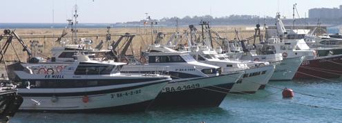 Vaixells de pesca al Port de Blanes
