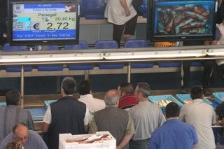 Subhasta de peix i marisc a la llotja de Blanes / Arxiu Blanesaldia