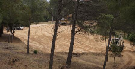Deforestació a Treumal, a principis del passat mes de juny