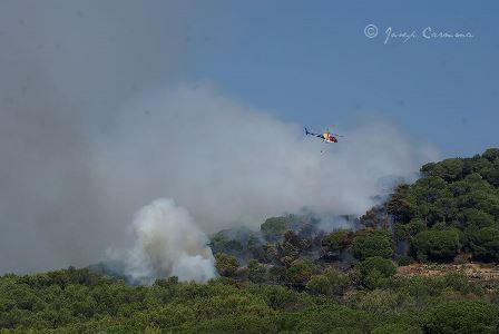 Imagen del incendio, en el que trabajan bomberos y medios aéreos de la Generalitat / Foto: Josep Carmona