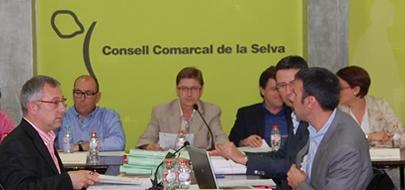 Joan Burjachs, primero por la izquierda, durante un pleno del CCS