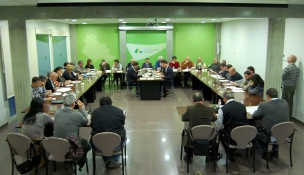 Imatge del ple de desembre del Consell