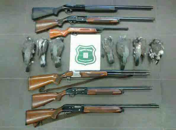 Les armes i els tudons intervinguts pels Agents Rurals