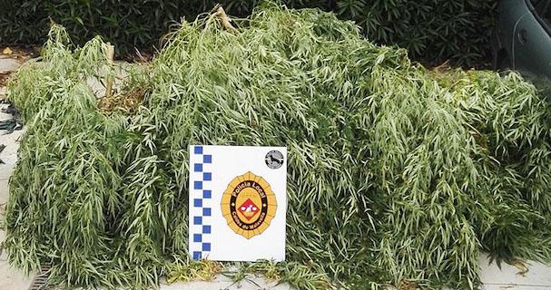 Policia Local de Caldes de Malavella